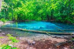 Sramorakod för blått vatten på den södra krabien för landskap Royaltyfri Bild
