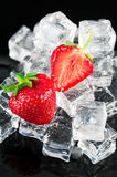 Srawberries with ice cubes Stock Image