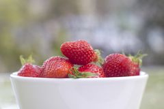 Srawberries in white bowl. Fresh Srawberries in white bowl. Outside shoot stock photography