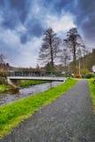 Srbska Kamenice, Tschechische Republik - 8. April 2017: bestreuen Sie den Weg mit Kies, der zu kleine Brücke über Nebenfluss Kame lizenzfreies stockbild