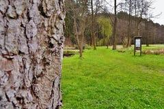 Srbska Kamenice, Tschechische Republik - 8. April 2017: Eingang zum Naturreservat Arba am Anfangfrühling Stockbilder