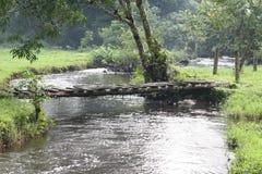 Sreaming river Stock Photos