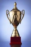Srebna trofeum filiżanka na błękicie Fotografia Royalty Free