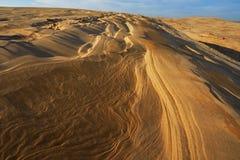 Srebne Jeziorne piasek diuny obrazy stock