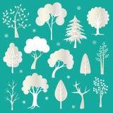 Srebni błyskotliwość drzewa Obrazy Stock