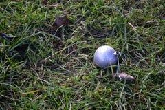 Srebny Bożenarodzeniowy bauble opuszczać w trawie Fotografia Stock