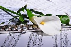 Srebny flet i szkotowa muzyka, kwiat Zdjęcie Royalty Free
