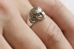 Srebny Jewellery Zdjęcie Stock