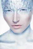 Srebny makeup obraz royalty free