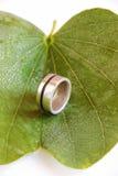 Srebny pierścionek z autentyczną Turkusową kolią Fotografia Royalty Free