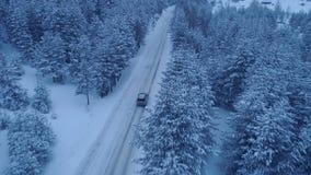 Srebny samochodowy jeżdżenie na zimy wiejskiej drodze w śnieżnym lesie zbiory wideo