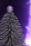 srebrny drzewo bożego narodzenia Obrazy Royalty Free