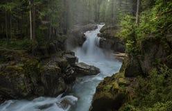 Srebro Spada w Mt Dżdżysty NP zdjęcie royalty free