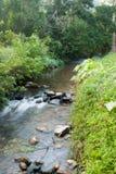 Sri星期六查家Na赖国家公园风景的河, Sukhothai,泰国 免版税库存图片