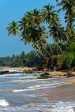 Sri Lanka Stock Foto's