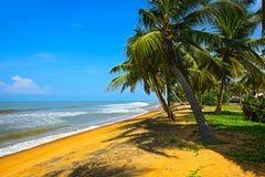 Sri Lanka Imagen de archivo libre de regalías