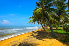 Sri Lanka Lizenzfreies Stockbild