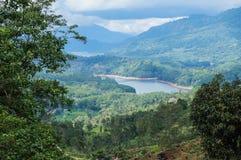 Sri Lanka ajardina o fundo da natureza Ella, Sri Lanka Imagens de Stock