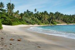 Sri Lanka beach 7. Beautiful beach on tropical island srilanka stock images