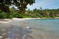 Sri Lanka beach 8. Beautiful beach on tropical island srilanka royalty free stock photo