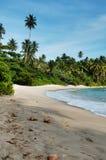 Sri Lanka beach 9. Beautiful beach on tropical island srilanka stock image