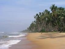 Sri Lanka, Ceylon, Küste des Indischen Ozeans. Lizenzfreies Stockfoto