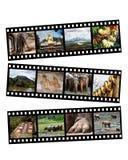 Sri Lanka collage Arkivfoton