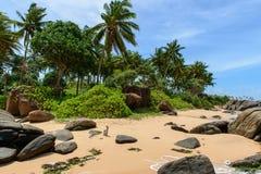 Sri Lanka. De kustlijn van stranden. Stock Foto's