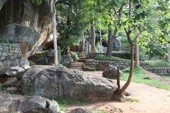 Sri Lanka - de tropische stenen van Sigiria Royalty-vrije Stock Foto's