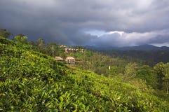 Sri Lanka - Ella Royaltyfri Bild