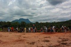 Sri Lanka, em novembro de 2011. Elefante Orphanag de Pinnawala. Foto de Stock Royalty Free