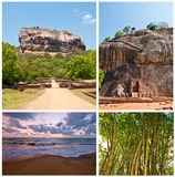 Sri-lanka environment set Royalty Free Stock Photo