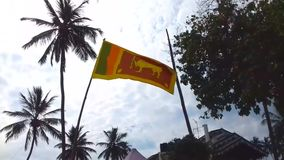 Sri Lanka flag flutters stock video footage