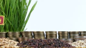 Sri Lanka flag waving with stack of money coins and piles of wheat. And rice seeds stock footage