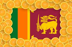 Sri Lanka flagga i ny citrusfruktskivaram royaltyfria bilder
