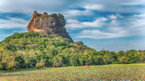 Sri Lanka: forntida Lion Rock fästning i Sigiriya arkivbilder