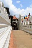 Sri Lanka. Het centrale deel. Kandy. Royalty-vrije Stock Afbeeldingen