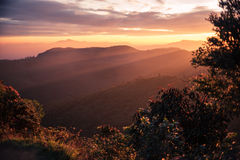 Sri Lanka: Horton Plains National Park stock afbeelding