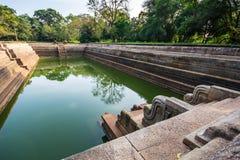 Sri Lanka jest parą baseny znać jako Kuttam Pokuna Obrazy Royalty Free