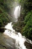 Sri Lanka jungle waterfall   Royalty Free Stock Photos