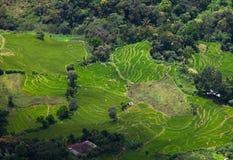 Sri Lanka landscapes Royalty Free Stock Images