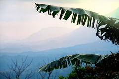 Sri Lanka landscapes Royalty Free Stock Image