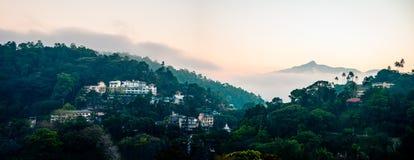 Sri Lanka landskapsikt med gröna träd royaltyfria bilder