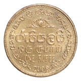 Sri Lanka-Münze Stockfoto