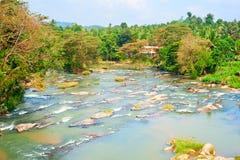 Sri Lanka mountains river Stock Image