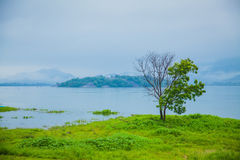Sri Lanka nature Royalty Free Stock Photos