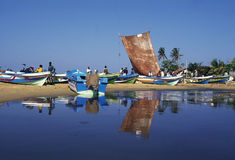 SRI LANKA NEGOMBO DHONI FISHINGBOAT Royalty Free Stock Photography