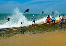 Sri Lanka, November 14: Indian Ocean fishermen pull the net with Stock Photos