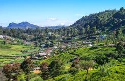 Sri Lanka. Nuwara Elija, view of the town between the field of tea royalty free stock photo