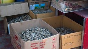 Sri Lanka, Nuwara Eliya, empresa de BlueField, o 14 de janeiro de 2017, mercado asiático do ` s do fazendeiro que vende peixes fr Imagens de Stock